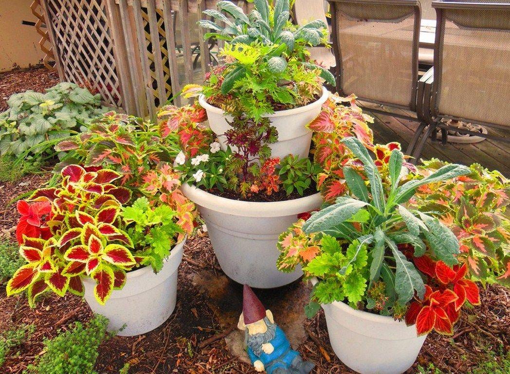 Container Gardening Ideas Uk Ideas | Container gardening ...
