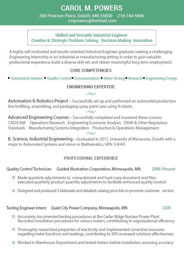 Visual Resume  Cv Infografico Schematici