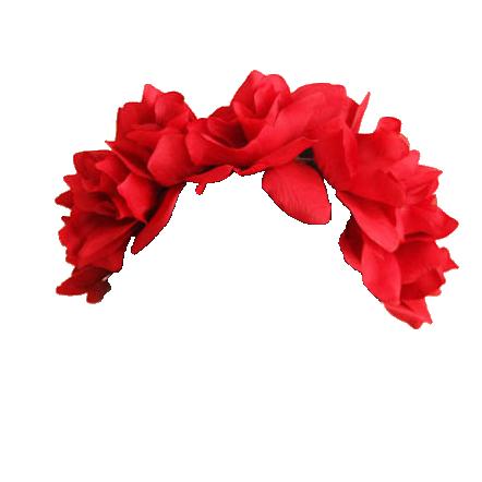 Tumblr Mp36ja9c9r1r11yp9o2 500 Png 442 442 Overlays Cute Flower Crown Flowers