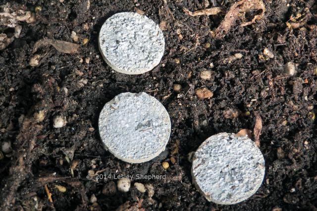 Use a Wine Cork to Make Pavers for a Fairy Garden: Recycle a Wine Cork Into Fairy Garden Pavers