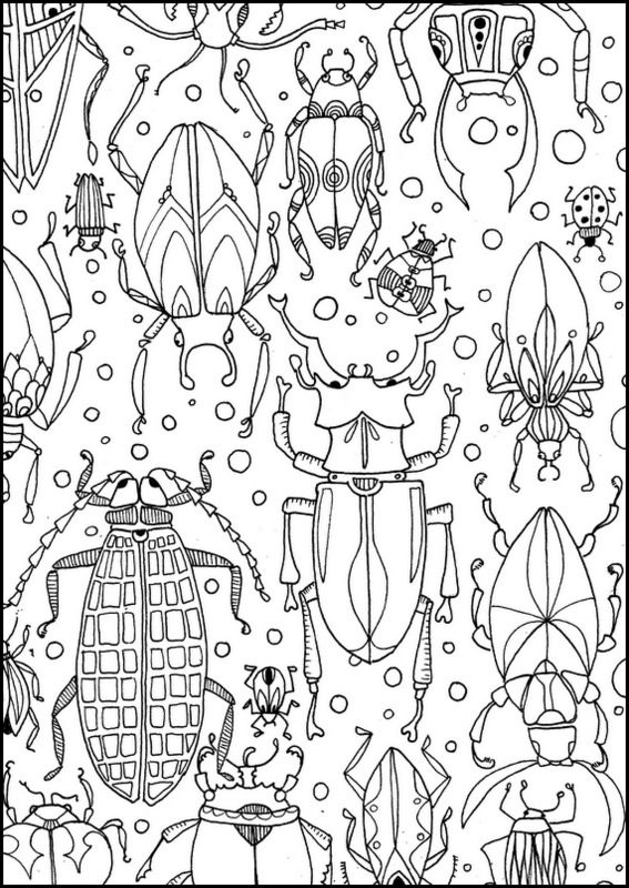 Pin von Karola Friedel auf colouring pages | Pinterest | Käfer ...