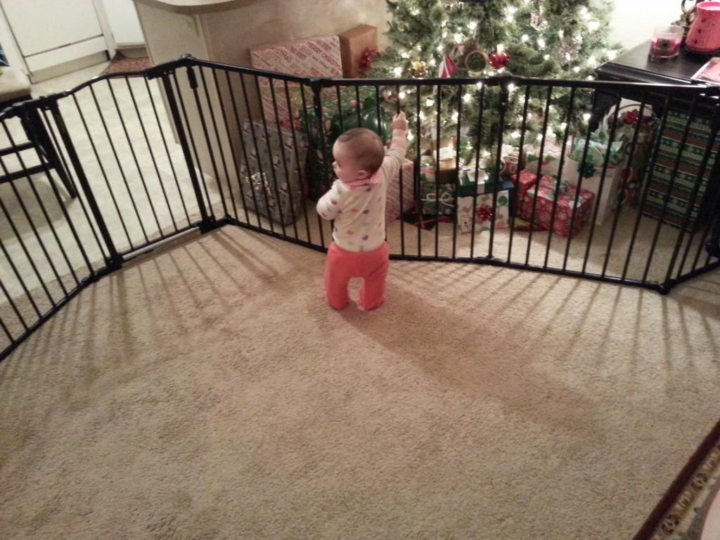 7 Foot Wide Baby Gate North States Industries 3 In 1 Arched