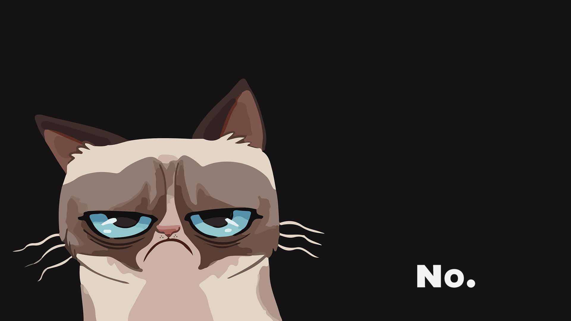 Pin By Tugba Akcay On Grumpy Cat Cat Wallpaper Grumpy Cat Cartoon Cat Background