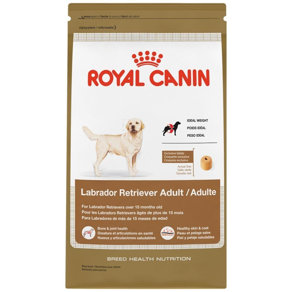 Royal Canin Breed Health Nutrition Labrador Retriever Adult Dry Dog Food Special Dog Product Just For You See It Now Dog Fo Dry Dog Food Dog Food Recipes