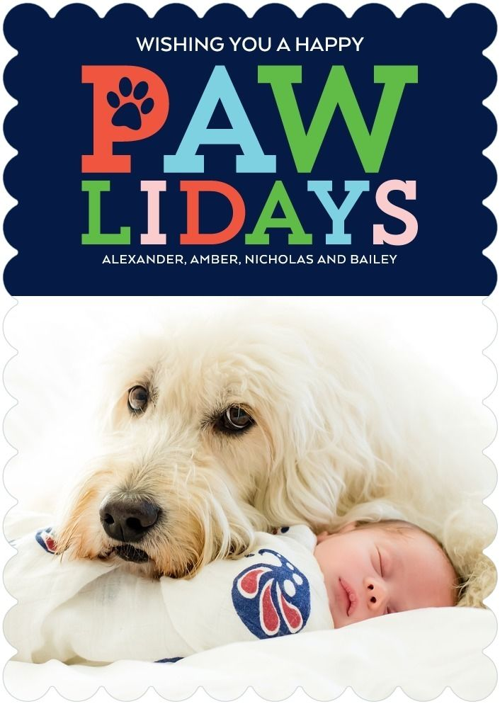 pawliday wishes pet christmas cards - Pet Holiday Cards