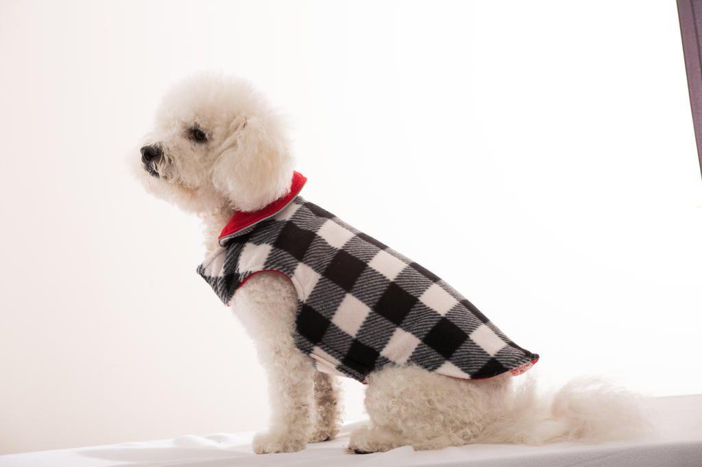 Dog Coat Dog Coats Dogs Breeds