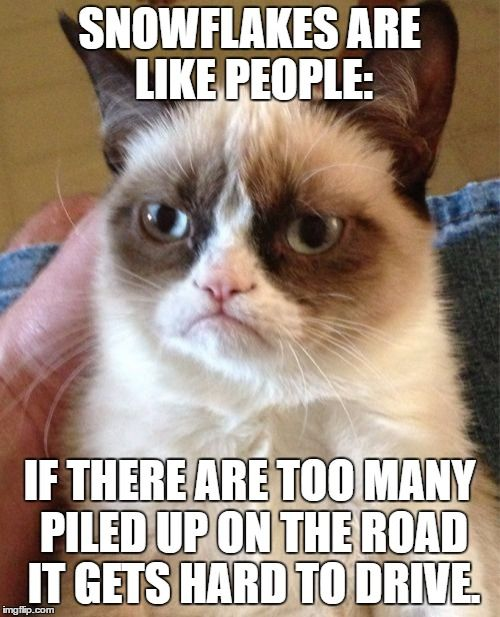 It Speaks For Itself. | SNOWFLAKES ARE LIKE PEOPLE: IF THERE ARE TOO MANY PILED UP ON THE ROAD IT GETS HARD TO DRIVE. | image tagged in memes,grumpy cat,murder,snow,snowflake,dead bodies | made w/ Imgflip meme maker
