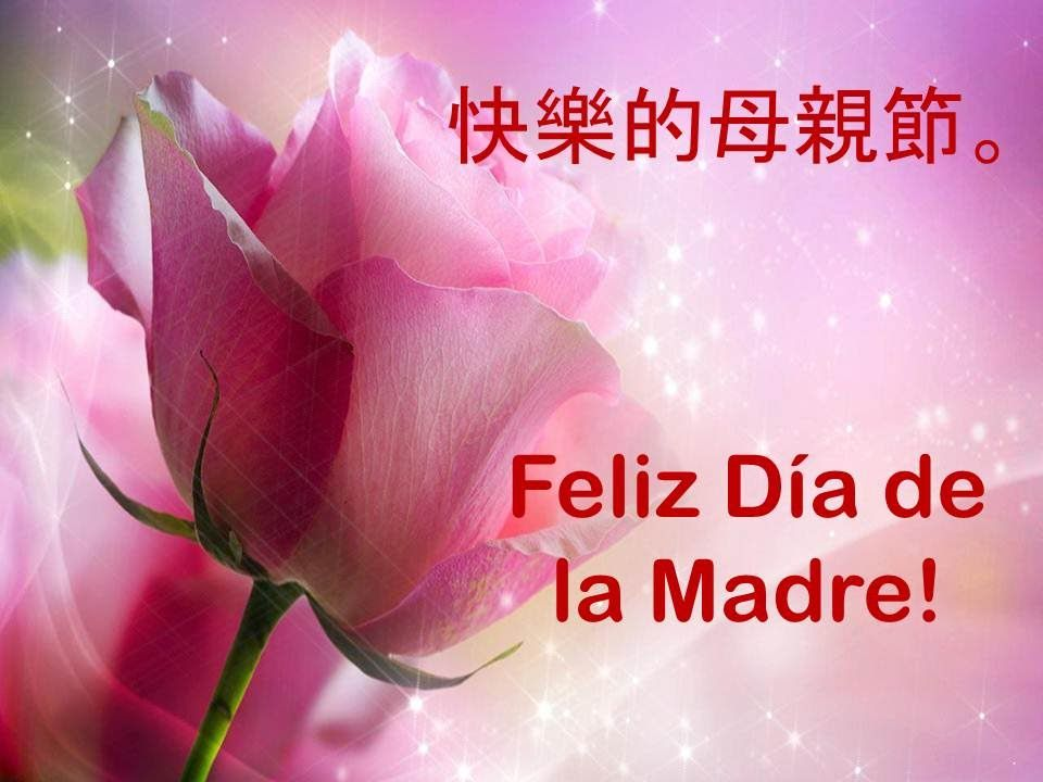 Feliz Dia De La Madre Tia Frases Bonitas Imagenes Feliz Dia