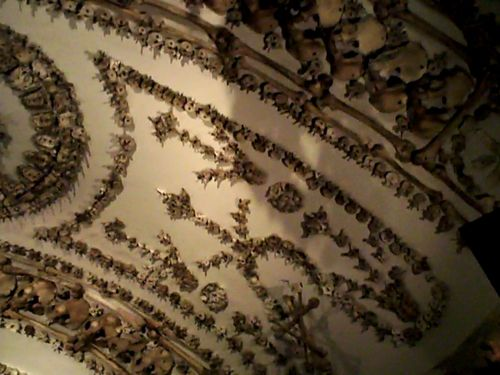 Capuchin Crypts in Rome. The rooms are decorated with the bones of the monks. This picture is one of the ceilings. I thought the designs were beautiful and amazing....others thought they were creepy.