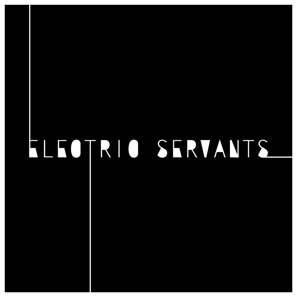 Cover by TolsToi (Electric Servants)