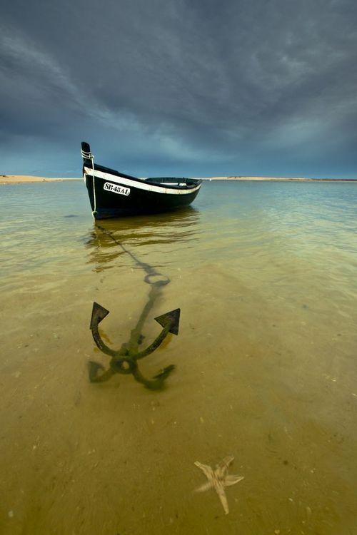 boat, anchor, starfish