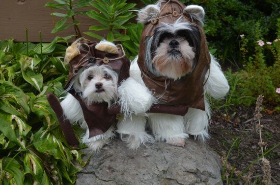 ewok inspired long white furry dog halloween costume with removable hood for puppies dogs. Black Bedroom Furniture Sets. Home Design Ideas