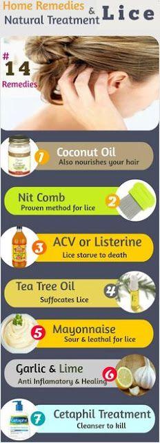 096fc219981bb566b1572a10ebf531c6 - How To Get Rid Of Head Lice With Baby Oil