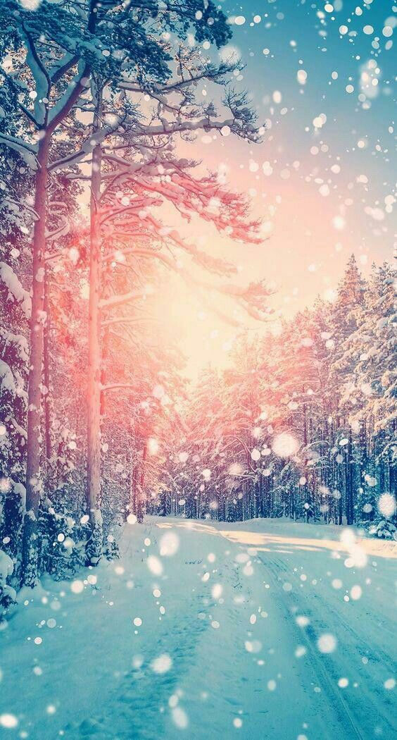 Pin By Sharon Uriona On Wallpapers Iphone Wallpaper Winter Christmas Wallpaper Backgrounds Winter Wallpaper
