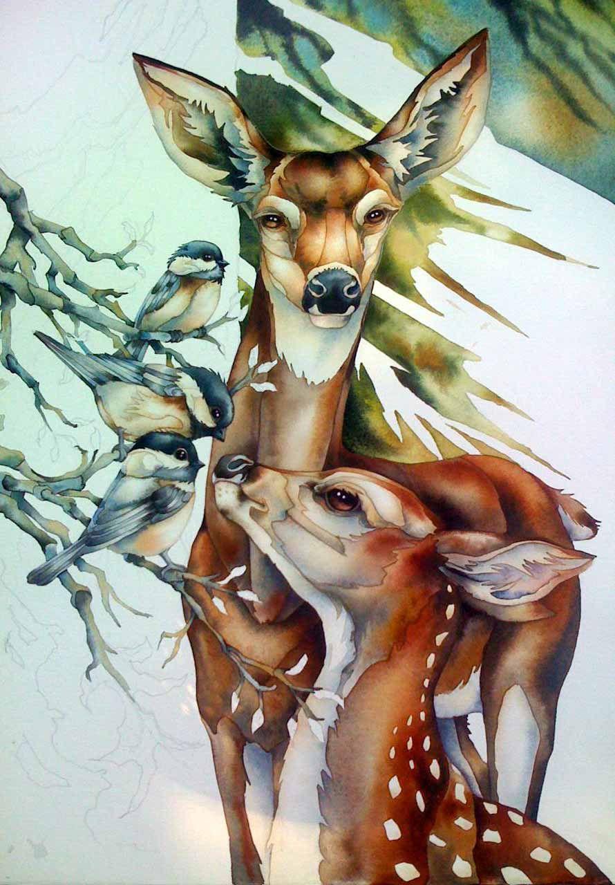 Jody Bergsma Peintre Aquarelle Biche Faon Et Mesanges