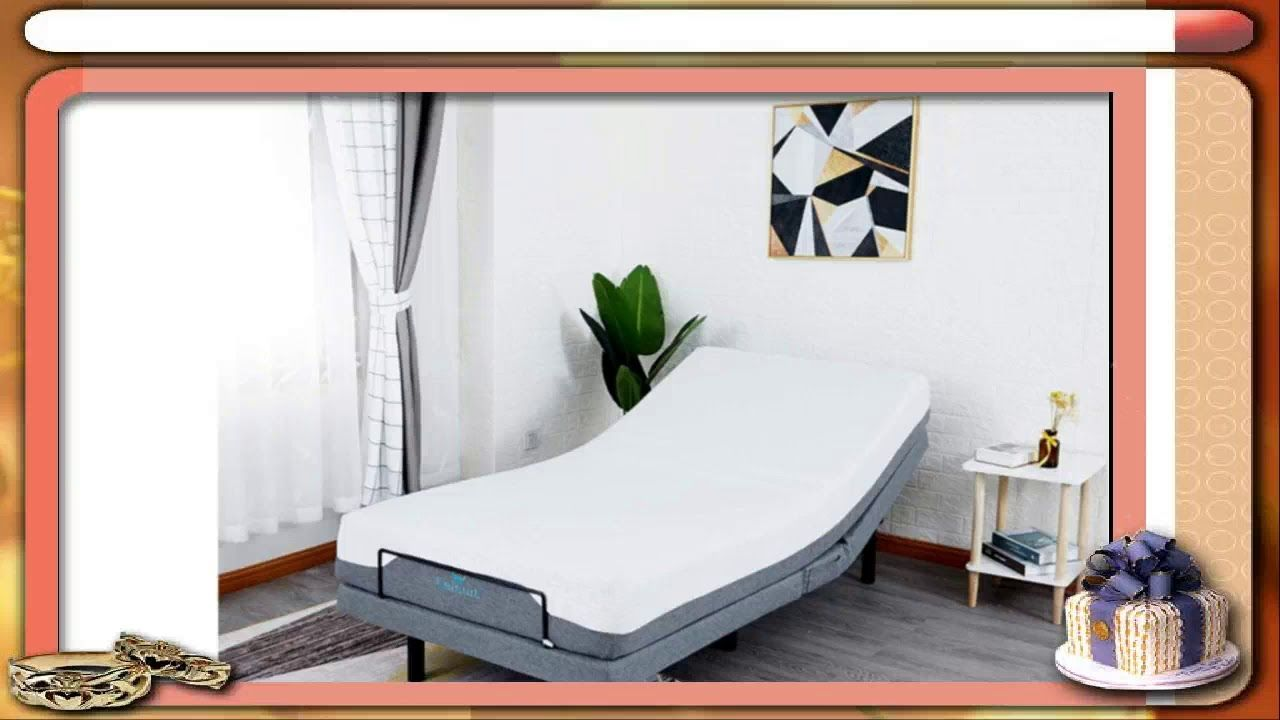 Leisuit Adjustable Bed Base With Wireless Remote Control Usb Ports