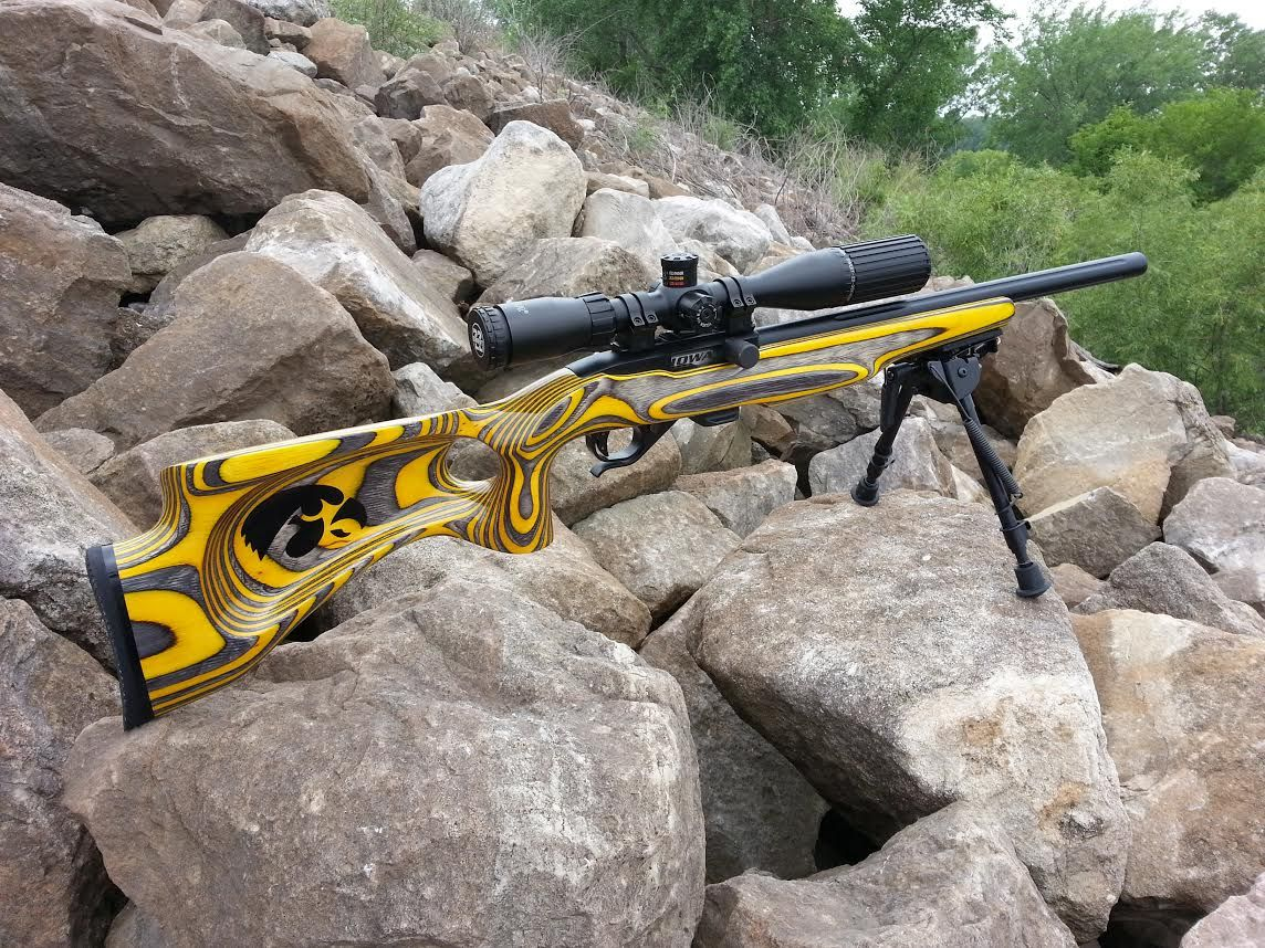 Pin on customized ruger 1022