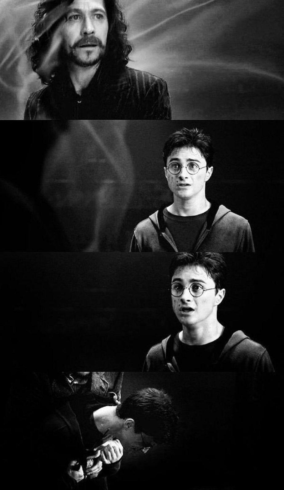 Mariel Flores Adli Kullanicinin Sirius Black Panosundaki Pin Harry Potter Harry Potter Filmleri Sirius Black