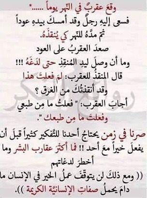 قصة رائعه Words Quotes Arabic Quotes