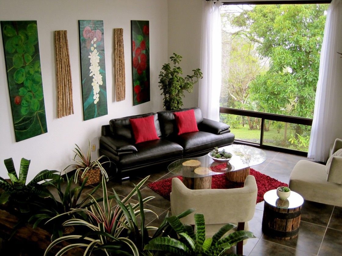 Cool Innovative Indoor Plants Living Room Ideas With Orname