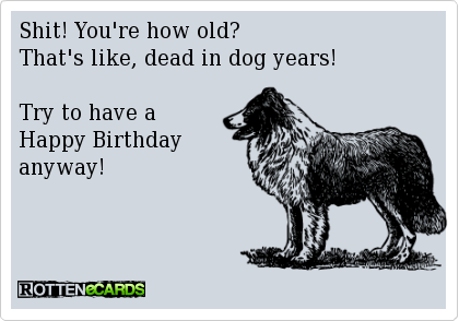 Oh My Freaking Stars Dog Years Birthdays