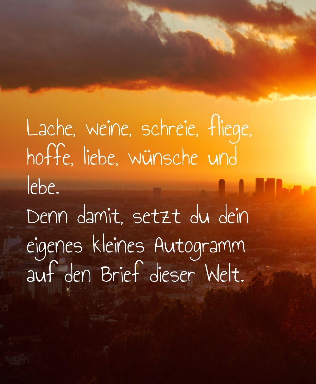 Lache Weine Schreie Fliege Hoffe Liebe Wunsche Und Lebe