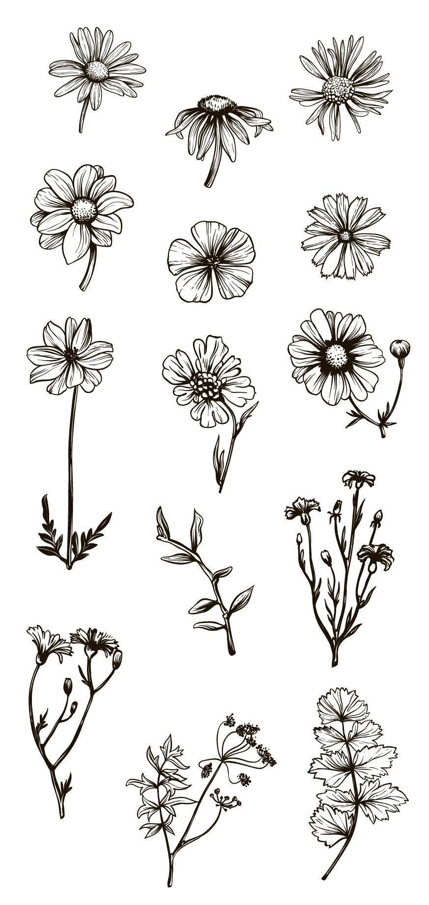 853dc8ed406a6 Vintage Flowers & Herbs by TatianaCociorva on Creative Market  #flowersdrawing