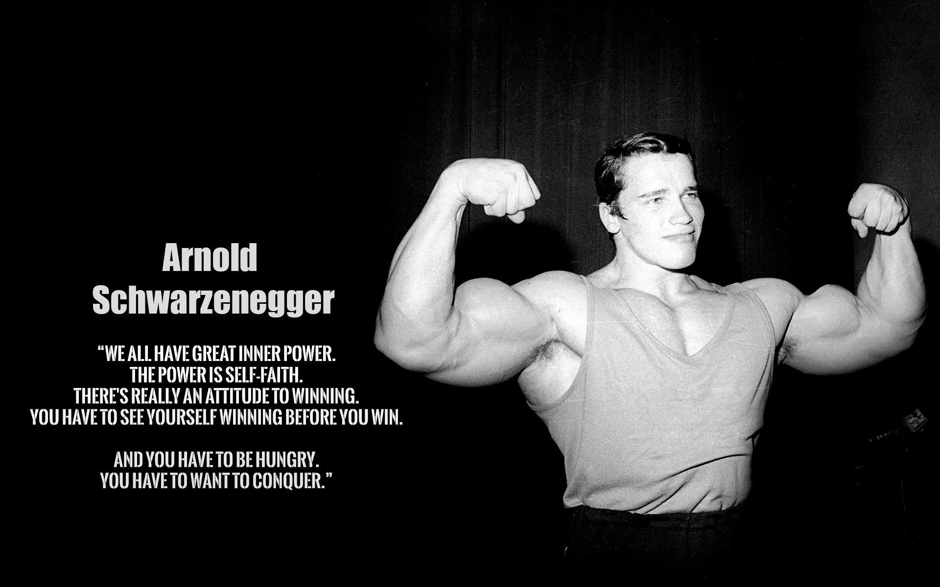 Arnold Schwarzenegger Wallpaper | Best Cool Wallpaper HD Download ...  Fabric PostersPoster PrintsBodybuilding QuotesGym ...