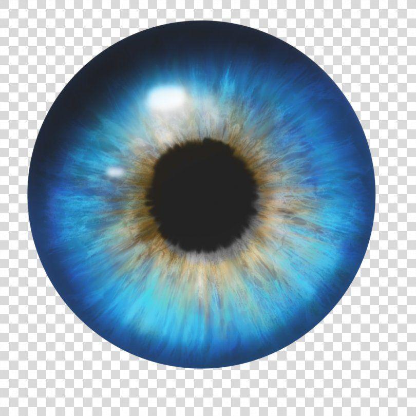 Human Eye Eyes Png Watercolor Cartoon Flower Frame Heart Human Eye Eye Illustration Eye Color