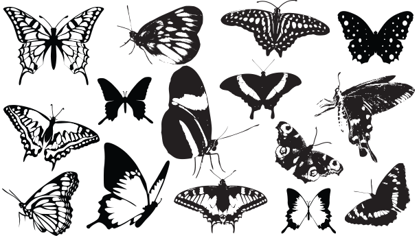 15 Butterfly Silhouette Vector Download Png Jpeg Eps Silhouette Vector Silhouette Clip Art Butterflies Vector