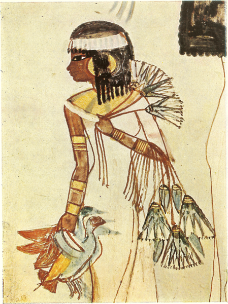 I've seen several tomb painting where they are hunting birds, obviously a popular apstime - Tomb of Menna - daughter hunting fowl (1422 - 1411 BC)