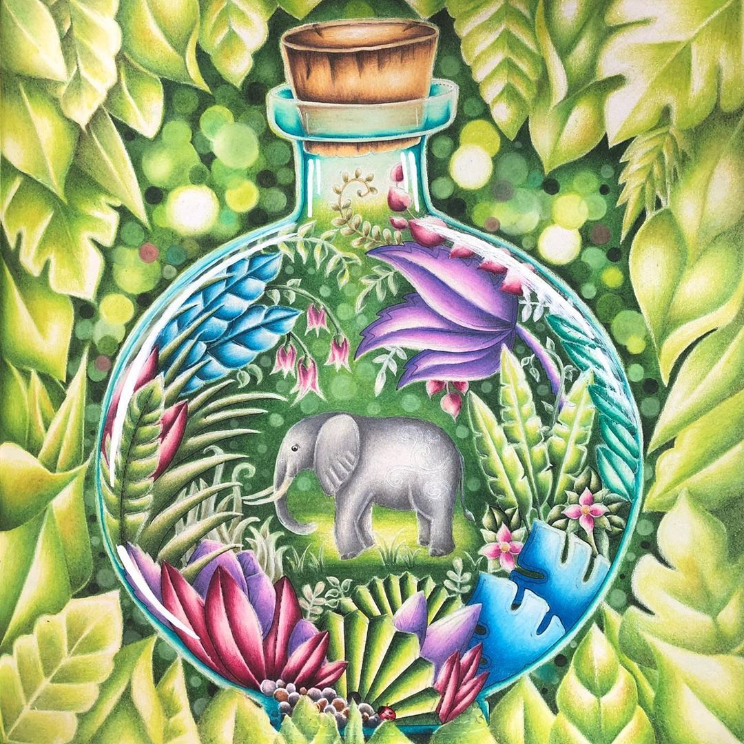 Naomi On Instagram Finished Magicaljungle Johannabasford Colouring Johanna Basford Coloring Book Magical Jungle Johanna Basford Johanna Basford Coloring
