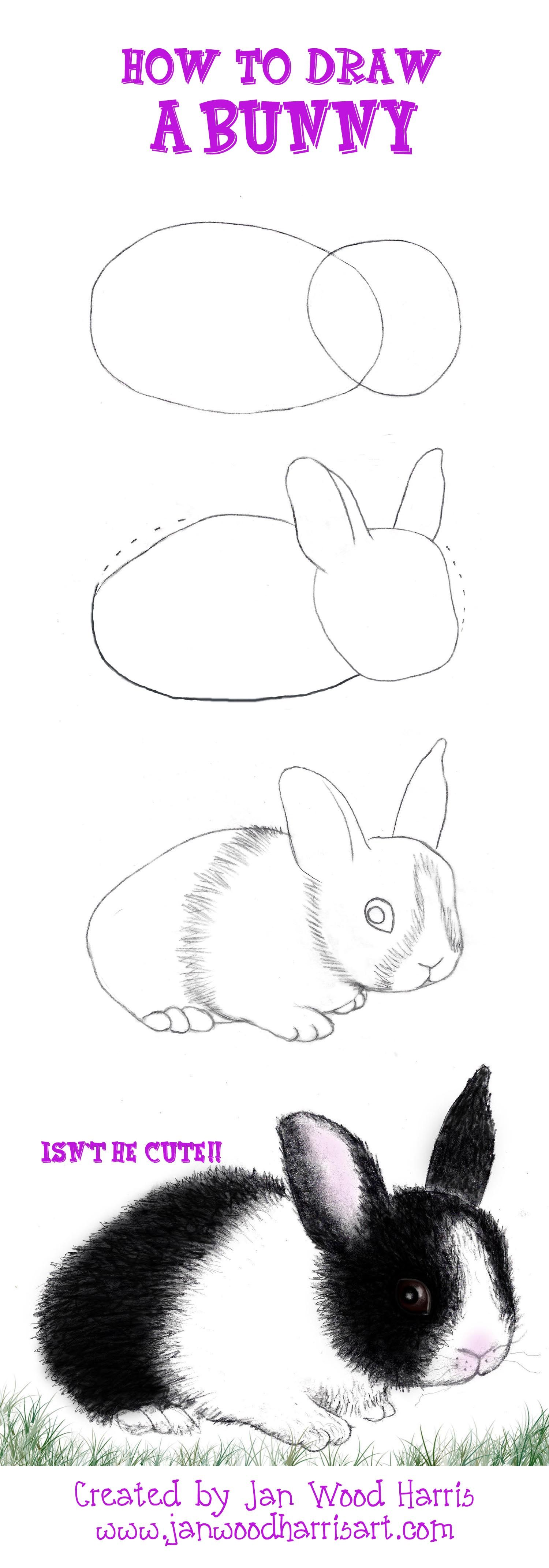 A Short And Simple Tutorial On How To Draw A Bunnylored