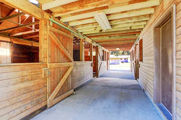 12 Barn Necessities You Can Buy At The Dollar Store Horses Are Expensive But There
