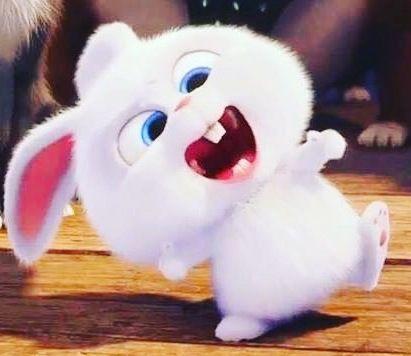 Secret Life Of Pets Snowball Cute