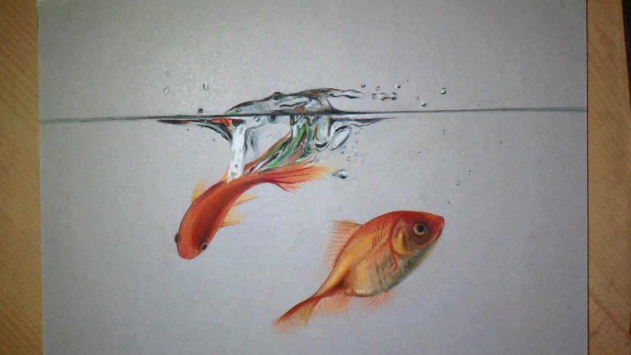 It is a picture of Refreshing Realistic Fish Drawing