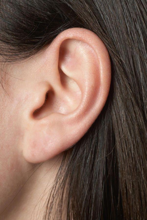 Ear_fullness.jpeg (600×900)   Ear picture, Sculpting, Ear