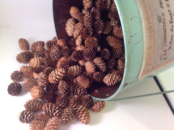 10 Wonderful Pine Cone And Christmas Tree Crafts Christmas Tree Crafts Pine Cone Christmas Tree Cone Christmas Trees