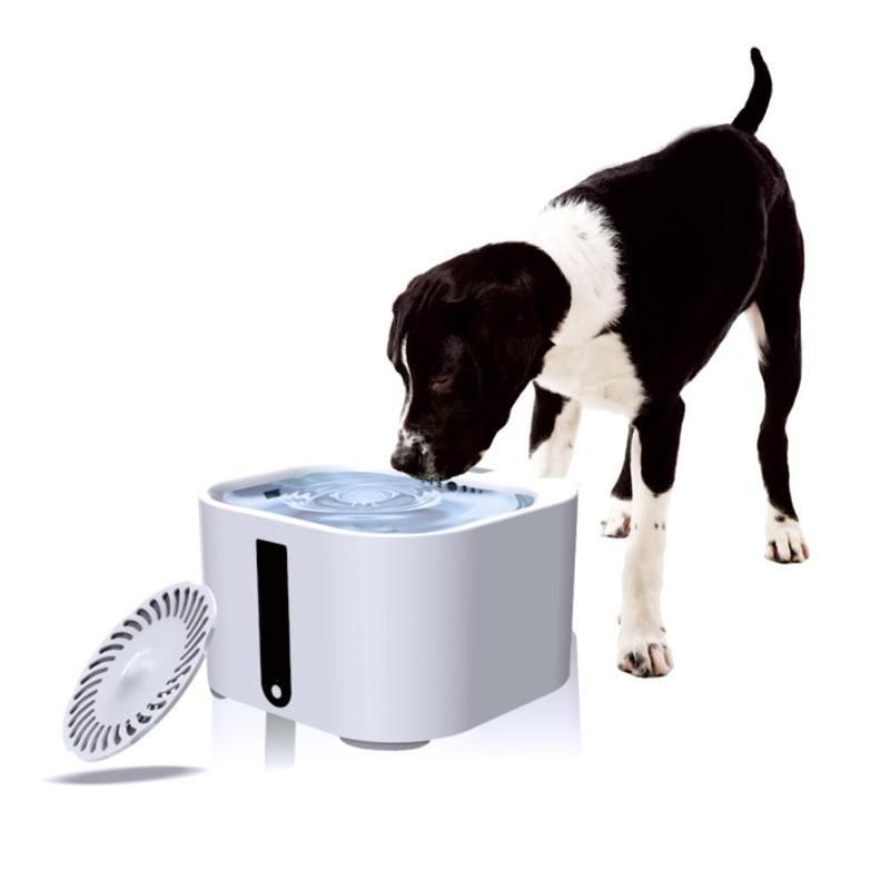 Automatic water feeder dog water fountain pet water