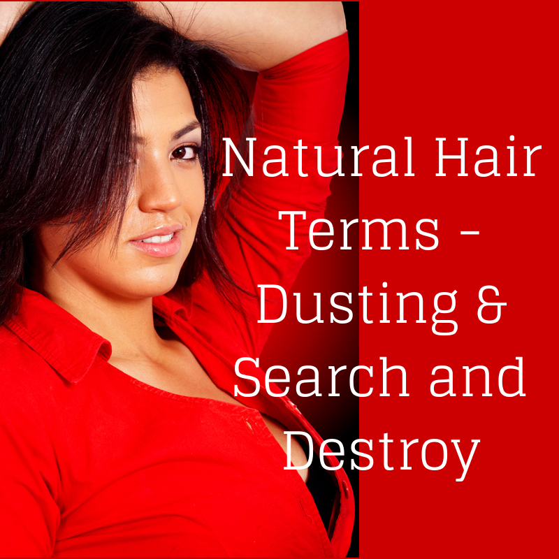 Natural Hair Terms - Dusting