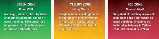 Living With Asthma  You Can Get Additional Details At The Image