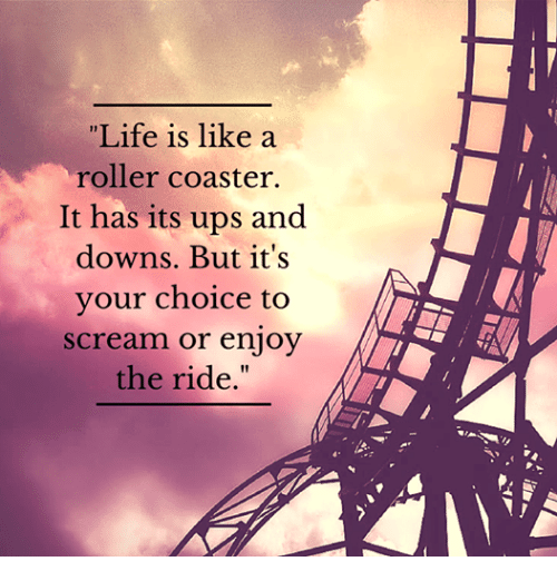 Life is like a roller coaster. It has its ups and downs ...