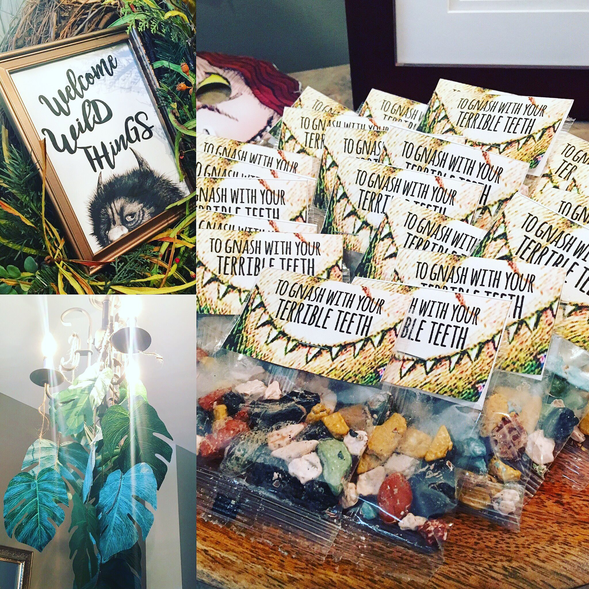 Party favors a wild one where the wild things are first