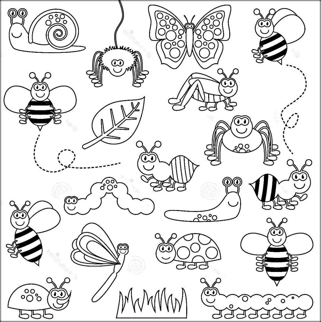 Insects Coloring Pages Insect Coloring Pages Coloring Pages Animal Coloring Pages [ 1024 x 1022 Pixel ]