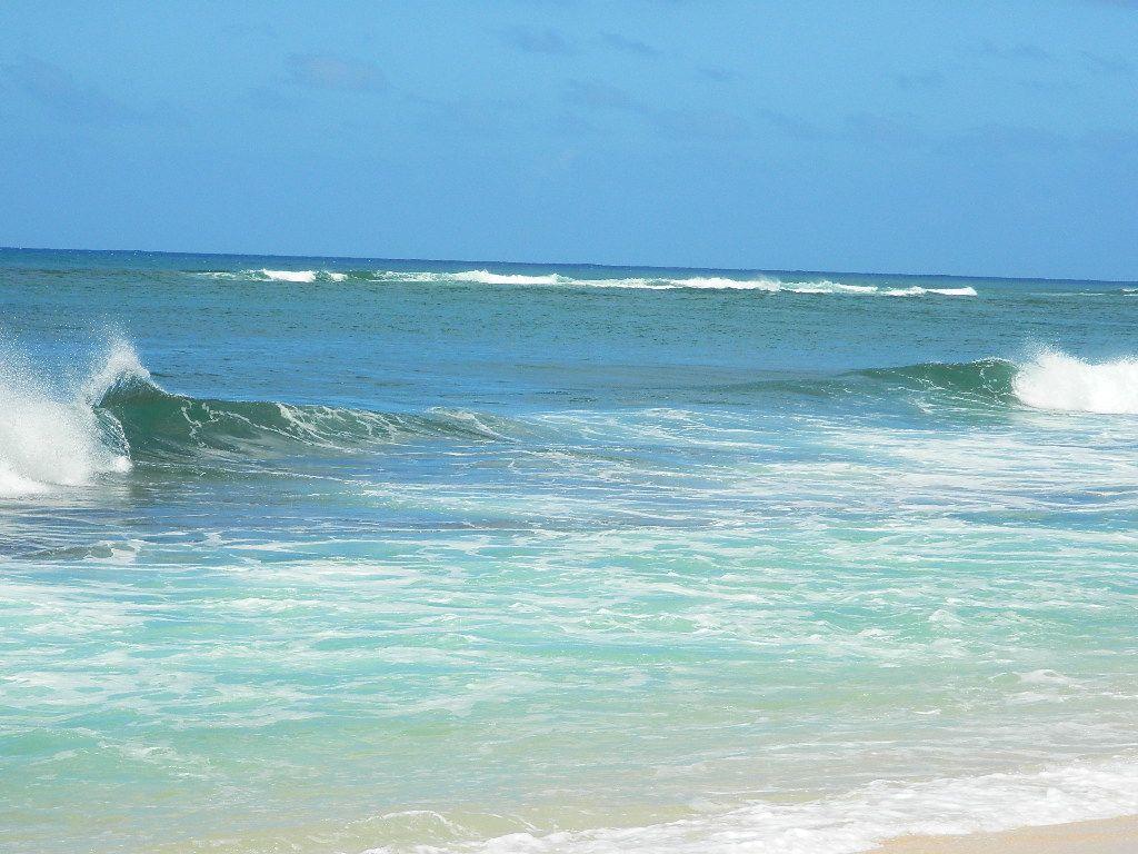 Hawaii Beach Time