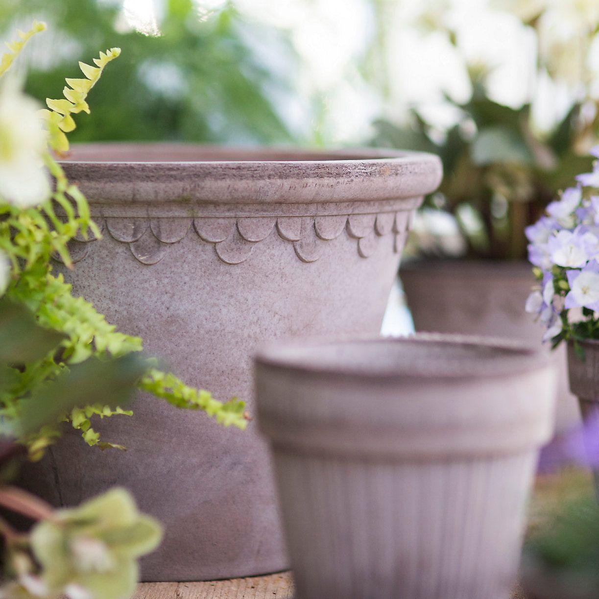 Købenler Scallop Pot in Garden Købenler Pots + Saucers at Terrain