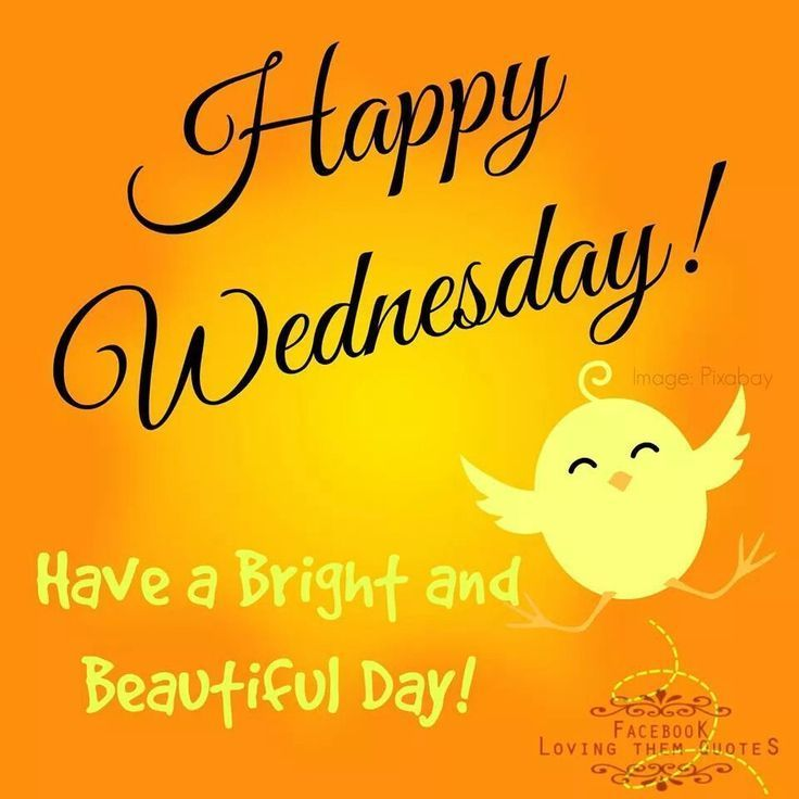 Happy Wednesday! Have a bright and beautiful day. | Happy wednesday pictures, Happy wednesday quotes, Good morning happy thursday