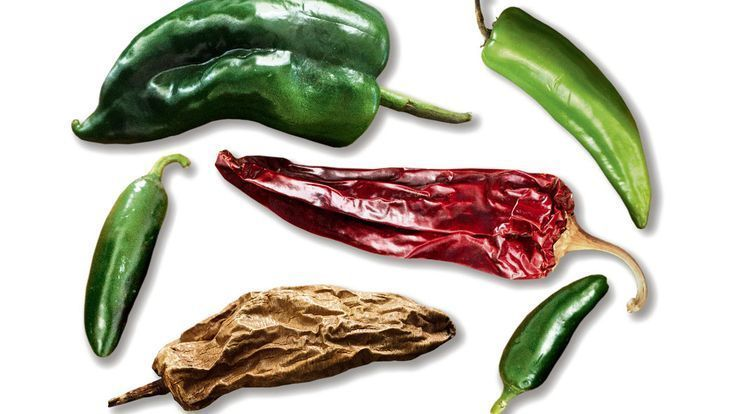 These Chiles? Nothing to Fear  Mark Bittman. Plus links to 3 Yucatan recipes. #markbittmanrecipes These Chiles? Nothing to Fear  Mark Bittman. Plus links to 3 Yucatan recipes. #markbittmanrecipes These Chiles? Nothing to Fear  Mark Bittman. Plus links to 3 Yucatan recipes. #markbittmanrecipes These Chiles? Nothing to Fear  Mark Bittman. Plus links to 3 Yucatan recipes. #markbittmanrecipes
