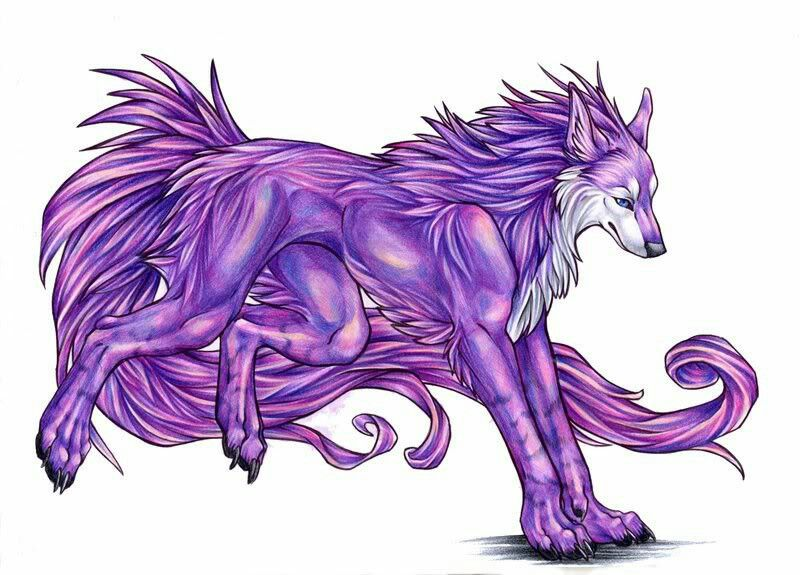 Cool purple wolf | Anime wolves | Pinterest | Wolf and ...