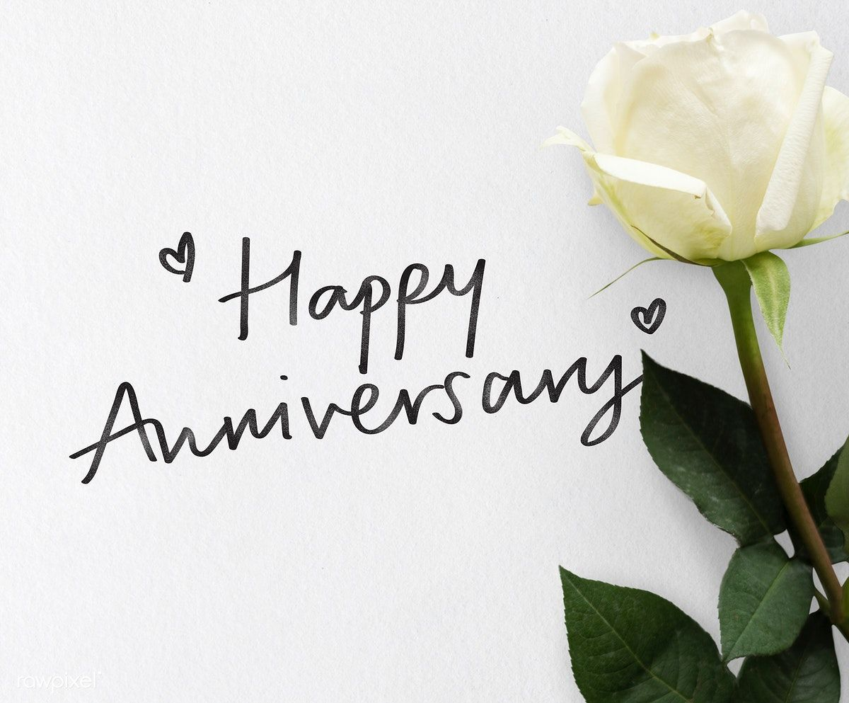 Download Premium Image Of Happy Anniversary Themed White Rose 426576 Happy Anniversary Cakes Happy Anniversary Friends Happy Anniversary Wishes